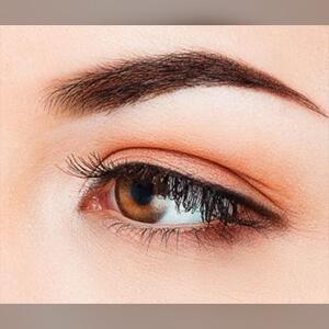 salon eyebrow tint